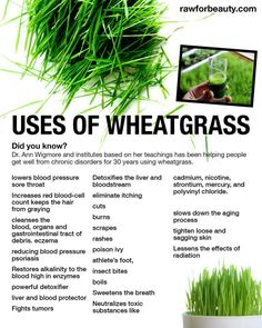 Wheatgrass should be taken alone on an empty stomach for optimal benefits .Take1-3 oz. of Wheatgrass juice 1-2 times per day or 3–4 times per day detoxification. 1 oz of wheatgrass = 2 pounds of green vegetables.