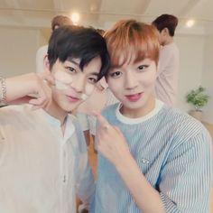 Wanna-One - Jihoon and Jinyoung