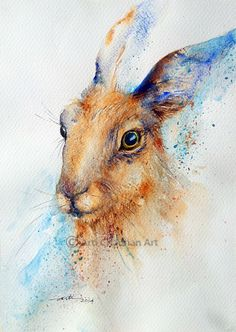 Original Art Hare Animal Watercolor Painting A4 by artiart, $79.00