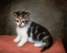 "Miss Ann White's Kitten, George Stubbs, 1790, oil on canvas, 10"" x 12"", held by Roy Miles Fine Paintings, London."