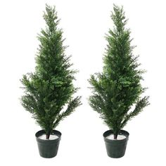 awesome  Light and Mobile Design, Over 400 Pine Tips Indoor/Outdoor, Rubber Trunk UV Resistant Rubber Leaves, 6.5 inch Pot  #Green #PureGarden  https://www.silkyflowerstore.com/product/pure-garden-artificial-mini-cedar-topiary-trees-set-of-2-34/  #Green #PureGarden