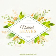 Fondo de hojas naturales pintadas a mano | Descargar Vectores gratis