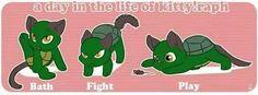 Raphie cat
