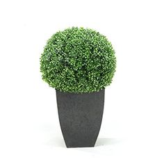 DandW Silks Boxwood Ball In Square Planter * Visit the image link more details.