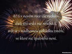 Dandelion, Merry Christmas, Santa, Friends, Flowers, Merry Little Christmas, Amigos, Dandelions, Wish You Merry Christmas