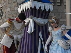 Magic Kingdom It's A Small World Animal Kingdom Epcot Hollywood Disney Disney Resorts Disney Resorts, Disney Disney, Cinderella And Prince Charming, Animals Of The World, Epcot, Magic Kingdom, Animal Kingdom, Hollywood, Dresses