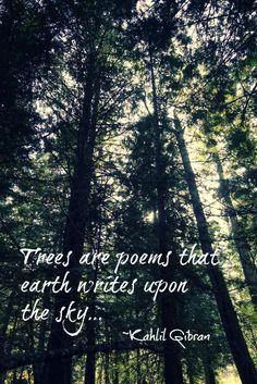 tree poems : Kahlil Gibran