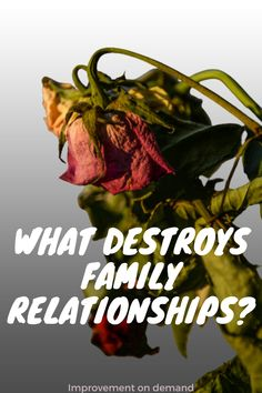Family relationships are sometimes complicated and not ideal. But even if you grew up in such a family, you can make a good parent to your kid. This is what you have to pay attention to. #family #parenting #familyrelationships #familyrelationshipquotes #quotestoxicpeople #healthyfamilyrelationships