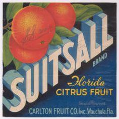 Wauchula Florida Carlton/'s Pride Orange Citrus Fruit Crate Label Art Print