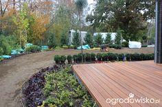 Ogród z lustrem - strona 64 - Forum ogrodnicze - Ogrodowisko
