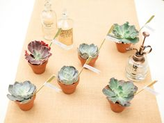 terra cotta pots at each place setting.  With herbs or succulents?  $.69 pots at Michael's or $3 pots with herbs at Trader Joes