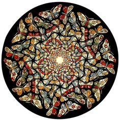 "Reverse engineering M C Escher's ""Circle Limit with Butterflies""."