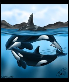 Finially got this artwork finished. It took me about a week to think of something to draw. I just had absolutly no inspiration lol. Anyway I like how this one turned out. Sea And Ocean, Fish Ocean, Wyland Art, Orca Art, Ocean Aquarium, Fantasy Drawings, Killer Whales, Wildlife Art, Marine Life