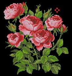 This Pin was discovered by Zuh Cross Stitch Pillow, Cross Stitch Bird, Cross Stitch Borders, Cross Stitch Flowers, Cross Stitch Charts, Cross Stitch Designs, Cross Stitching, Cross Stitch Embroidery, Cross Stitch Patterns