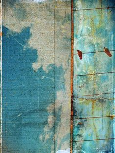 The Concrete Sky - Tara Turner