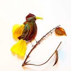 #bird #flower #yellow #inspiration #floral #collage #leaves #petal #art #artwork #creative @arts_help @instagram @artworksfever #nature @natgeo #FaceTheFoliage #foliage