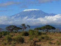 Kilimandžáro    Legendárna africká hora je povestná svojou snehovou čiapočkou. Ľadovce sa však roztápajú, hlavne vďaka odlesňovaniu a globálnemu otepľovaniu.