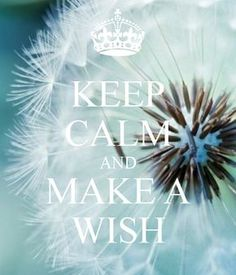 KEEP CALM AND MAKE A WISH .