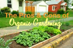Organic or Conventional Gardening: What's Better? Look at both options and then make your own DIY gardening project!