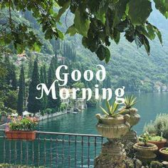 Latest good morning images with flowers ~ WhatsApp DP, Love DP, DP Images, WhatsApp DP For Girls Good Day Images, Good Morning Beautiful Pictures, Good Morning Images Flowers, Latest Good Morning Images, Good Morning Image Quotes, Good Morning Texts, Good Morning Happy, Good Morning Picture, Good Morning Messages