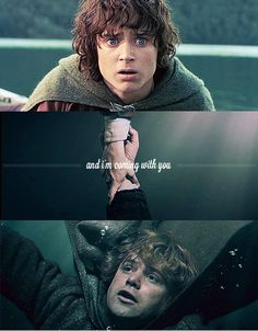 Sam wouldn't let Frodo go to Mordor on his own, and almost drowned trying to catch up with him. If that's not a loyal friend, I don't know what is. Lord Of Rings, Fellowship Of The Ring, Samwise Gamgee, J. R. R. Tolkien, Tolkien Books, Concerning Hobbits, Frodo Baggins, Into The West, The Two Towers