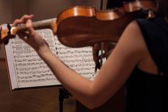 Musik - in der Krone in Au unverzichtbar! Violin, Music Instruments, Organ Music, Concerts, History, Musical Instruments
