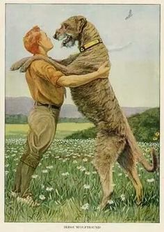 Items similar to Irish Wolfhound 1919 Vintage Dog Print by Louis Agassiz Fuertes Painting Print Mounted with Mat Irish Wolfhound Print on Etsy Big Dogs, Large Dogs, Dogs And Puppies, Doggies, Antique Prints, Vintage Prints, Vintage Art, Antique Art, Vintage Images