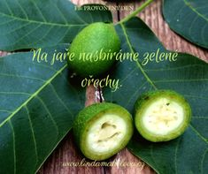 zelené ořechy Home Canning, Avocado, Lime, Fruit, Drinks, Food, Syrup, Drinking, Beverages