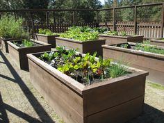 Garden Designs With Raised Beds chic elevated raised bed garden plans raised bed vegetable gardening making raised bed garden soil Raised Garden Bed Ideas Shambhala Pottery Where The Day Went