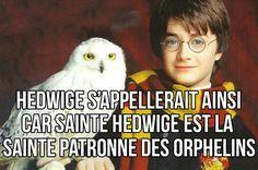 21 trucs qui font de Harry Potter une série absolument brillante