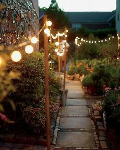 Thin posts (tiki torches) along walkway with round lights or chinese lantern style stringers between. Up high enough to stop cats/dogs playing with them or people tripping over them, cemented into ground with rocks if you have a problem with things being dug up.