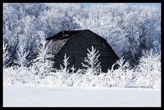 the winter barn.