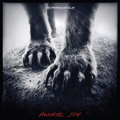 Shearwater is back and releasing a new album in 2012 called Animal Joy, this time around with the help of the always on point Sub Pop Records. From this track alone I'm extremely excited to h… Vinyl Lp, Vinyl Records, Lps, Zone Telechargement, Great Albums, Musicals, Cool Things To Buy, Songs, This Or That Questions