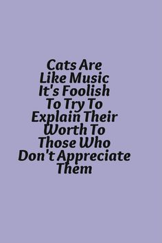 Cats are like music it's foolish to try to explain their worth to those who don't appreciate them