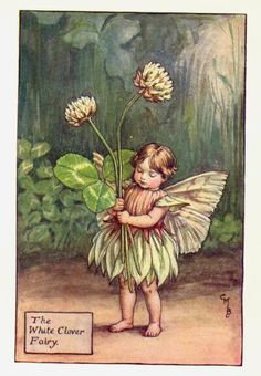White Clover Fairy Print or any of the original vintage Cicely Mary Barker