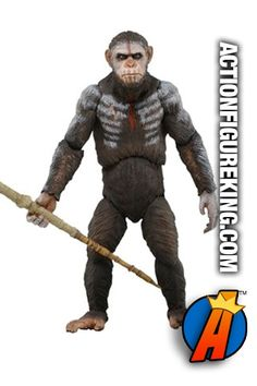 NECA Dawn of the Planet of the Apes Series 1 Caesar Action Figure. See the entire series here http://actionfigureking.com/list-3/neca-toys-collectibles-actionfigures-and-memorabilia/459-planet-of-the-apes-neca-toys-action-figures-and-collectibles #neca #planetoftheapes #actionfigures