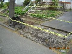 Removal of Driveway Apron and Common Sidewalk.... After....