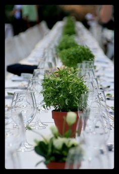 Superb eco friendly wedding ideas