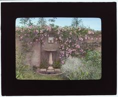 "[""Gray Gardens,"" Robert Carmer Hill house, Lily Pond Lane, East Hampton, New York. (LOC)"