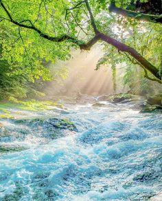 Water Lighting, Photoshoot, Japan, River, Outdoor, Instagram, Outdoors, Photo Shoot, Outdoor Games