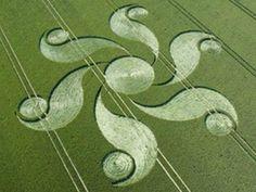dibujos en campos de trigo - Buscar con Google