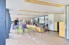 Gallery of Pre-Preparatory School in Johannesburg / TC Design Architects - 15