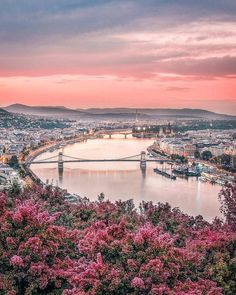 Spring in Budapest, Hungary Hungary Travel Destinations Honeymoon Backpack Backp… – Best Europe Destinations Places To Travel, Travel Destinations, Places To Visit, Nature Photography, Travel Photography, Budapest Travel, Hungary Travel, Destination Voyage, Most Beautiful Cities