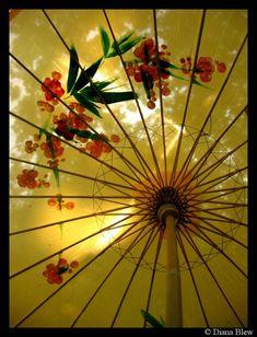 summer japanese umbrella by ~ButterflyBlew on deviantART