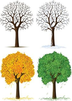 Tree Pack Four Seasons Image Four Season Tree Cutout Large Tree Clipart, Clipart Images, Four Seasons Image, Seasons Posters, Aqua Wallpaper, Oil Painting Pictures, Art Pictures, Page Decoration, Tree Templates