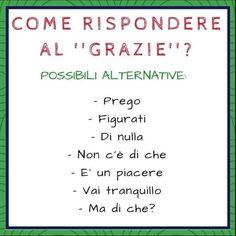 Italian vocabulary - Replies to 'Grazie' Italian Grammar, Italian Vocabulary, Italian Phrases, Italian Words, Italian Quotes, Italian Language, Vocabulary Words, Korean Language, Spanish Language
