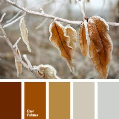 Color Palette #2518