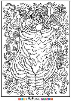 Free Printable Domestic Cat Coloring Page Ciepa Available For Download Simple And Detailed