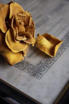 http://leemconcepts.blogspot.nl/2015/10/de-nieuwe-kleur-van-2016-we-gaan-voor.html #oker #geel #goud #ochre #gold #yellow #interior @akzonobel  #verf #paint #kleur #color