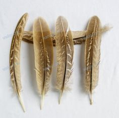 100pc/lot Duck Mallard Hen Plumage Wing Feathers Quill Natural Beautiful FREE SHIPPING $11.61